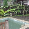 Jasa Penataan Landscape